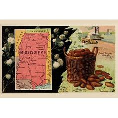 "Buyenlarge 'Mississippi' by Arbuckle Brothers Graphic Art Size: 28"" H x 42"" W x 1.5"" D"