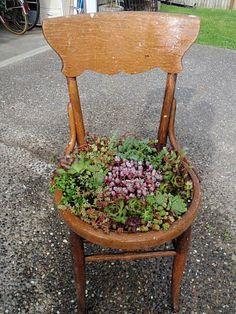 Sch n bepflanzter stuhl garden ideas pinterest - Bepflanzter stuhl ...