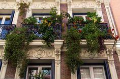 Balcones de #Madrid en primavera calle San Carlos #Lavapies las cosas bonitas que se ven #CallejeandoMadrid pic.twitter.com/2MvEzuxtUP