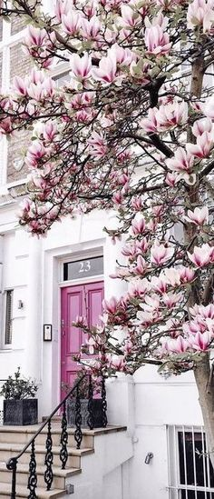 Love that pink door!