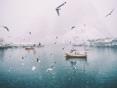 """unrar: """" Stian Servoss says this enchanting photo was taken on a day that actually began as a sunny one in Reine, a small fishing village in the Lofoten Islands in Norway. """""""