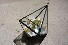 Raindrop Glass Hanging Terrarium by BlueFishStudios on Etsy