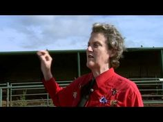 In part 3 Temple Grandin talks about issues that will face the livestock industry in the coming years and ways the industry can be improved. Pig Feed, Temple Grandin, Livestock, Behavior, North America, Lady, Farming, School Ideas, Insects