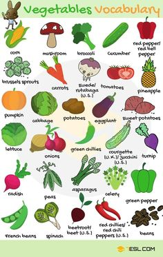 Vegetables Vocabulary Vegetables in English! List of vegetables with images and examples. Learn these vegetables names to increase your vocabulary words about fruits and vegetab Learning English For Kids, Teaching English Grammar, English Lessons For Kids, English Writing Skills, Kids English, English Vocabulary Words, Learn English Words, English Phrases, English Language Learning
