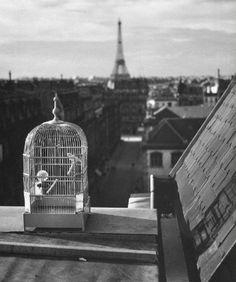 André Kertész: Rue de Vaugirard, Paris, 1931