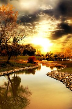amazing reflection of trees, clouds and sunset.....