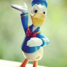 Donal Duck - Cannon 550D