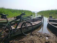 Jezioro Wigry. Opis szlaku znajdziesz http://lubimyrowery.pl/trasy/podlaskie/szlak-pieszo-rowerowy-dookola-jeziora-wigry-im-antoniego-patli/