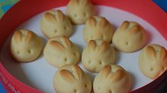 Evde Kendin Yap'ta pratik ve lezzetli Tavşan Kurabiye Tarifi