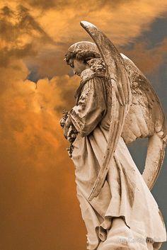 'Look Homeward Angel' Art Print by Jan Cartwright Cemetery Angels, Cemetery Art, Cemetery Statues, Angels Among Us, Angels And Demons, Statue Ange, Greek Statues, I Believe In Angels, Ange Demon