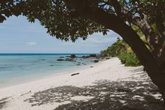 kirsty and jon - vomo island - Kama Catch Me (7 of 209)