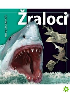 Takes readers on a deep journey into the world's oceans for a closer look at sharks and their relatives, featuring illustrations and interesting, updated information about these fascinating creatures. Oceans Of The World, Ocean Themes, See Photo, Childrens Books, Shark, Creatures, Illustration, Movie Posters, Animals
