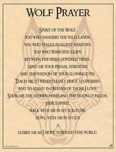 i love this....the wolf is my spirit guide....