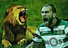 Bas Dost Bas Dost, Scp, Football, Album, Game, Sports, Animals, Beautiful, Angels