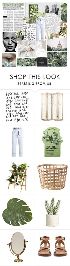 """i bite my nails, she gets hers done"" by d-rowsy ❤ liked on Polyvore featuring philosophy, GUSTA, Tony Moly, Kekkilä, Pier 1 Imports, Allstate Floral, Zara and Chanel"