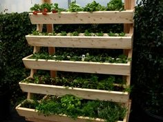 Attractive Tiered Planters