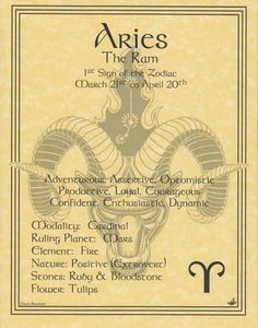 """A wonderful reference, the Aries zodiac poster explores the qualities of the 1st sign of the zodiac. 8 1/2"""" x 11"""""""