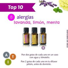 Essential Oils Pure and Natural My Doterra, Doterra Blends, Melaleuca, Essential Oil Uses, Doterra Essential Oils, Doterra Allergies, Esential Oils, Organic Oil, Natural Oils