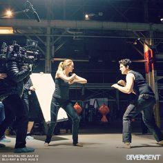 DivergentWorldRo: Inapoi la filmarile Divergent: Lupta dintre Tris s. Divergent Fandom, Divergent Trilogy, Divergent Insurgent Allegiant, Tris And Four, Movies Worth Watching, Veronica Roth, Shailene Woodley, Best Series, Series 4