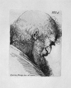 Old man`s head in profile - Giovanni Battista Piranesi