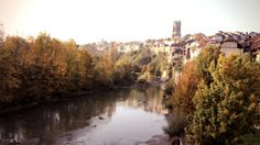 fribourg, swiss