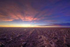 Harvest Tracks II by Scott Ackerman Photography, via Flickr