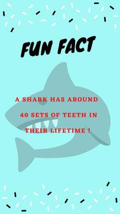 Smile Dental, Dental Care, Dental Hygiene, Orthodontics Marketing, Dental Fun Facts, Dental Phobia, Fun Facts For Kids, Fun Fact Friday, Dentistry
