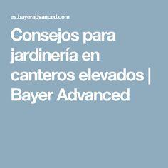 Consejos para jardinería en canteros elevados   Bayer Advanced