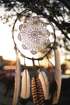 Feather Love' Wood Vine Wreath Doily Dreamcatcher