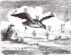 """'To make the Bird fly' is to free the Spirit from its material prison, that it may soar in the alchemical sky and bring back Below the benefits of what is Above. The whole Work, and I have repeatedly stated, is a series of Dissolutions"""