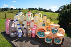 Maleny Dairies - It's All Good - 5494 2392 Best Chocolate Milk, Halal Certification, Dairy Diary, Its All Good, Sunshine Coast, Four Square, February, Make It Yourself, Bottle