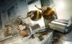 ArtStation - The Shaved Bumblebee, Till Nowak