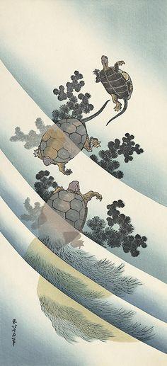 "Japanese Ukiyo-e Woodblock print, Hokusai, ""Turtles"" Japanese Prints, Japanese Art, Koi, Painting Prints, Art Prints, Katsushika Hokusai, Japanese Illustration, Japan Design, Japanese Painting"