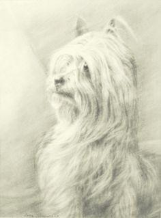 Debra Sisson      Pencil Drawing