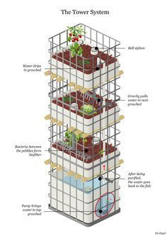 aquaponics tower