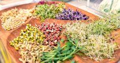 Ako vypestovať klíčky: Rady, informácie a postupy krok za krokom - Žena SME Superfoods, Seeds, Vegetables, Cooking, Green, Plants, Sprouts, Kitchen, Super Foods