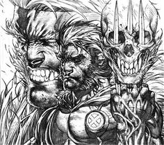 Wolverine and Sabertooth's skull