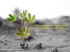 Mais esperança nos meus passos do que tristeza nos meus ombros. #CoraCoralina #Esperanca
