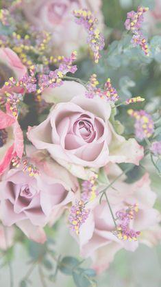 Flower Phone Wallpaper, Flowers Photography Wallpaper, Flower Wallpaper 90A