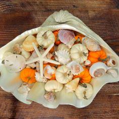 Seashell Pumpkin Fall Centerpiece