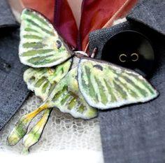 enameled luna moth