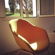 #yellow #hay #roomwithaview Egg Chair, Yellow, Furniture, Home Decor, Room Decor, Home Interior Design, Home Decoration, Interior Decorating, Home Improvement