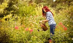 If you want to practise mindfulness, the garden is the place to be | Life and style | The Guardian