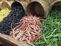 plant-in-middle-of-season5 by leetraister, via Flickr