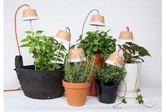 Garden ideas | Garden Europe