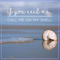 ....if I don't answer, leave a message at the sound of the ocean!! ☎️
