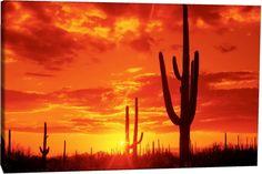 deserto tramonto - Cerca con Google