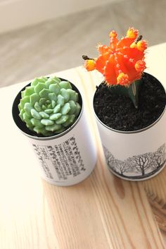 Tin Can Planters for Succulents.  Love this idea and love this blog!! REUSE is better than RECYCLE!