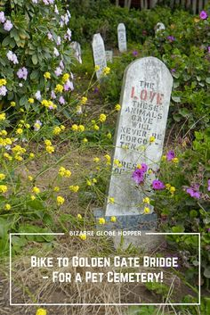 Bike to the Golden Gate Bridge and make a peculiar detour to Presidio Pet Cemetery, the final resting place for military pets since the World War II.
