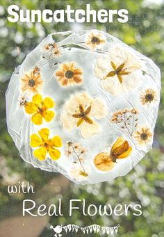 Here's a fun suncatcher flower craft for kids. This unusual method of preserving flowers gives them a gorgeous vintage look that's so pretty on the windows. #naturecrafts #suncatcher #suncatchercraft #suncatchers #flowercrafts #springcrafts #summercrafts #kidscrafts #craftsforkids #kidsactivities #kidscraftroom